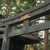 阿茶局(雲光院)。家康の側室、大坂冬の陣の和議に尽力。一位局