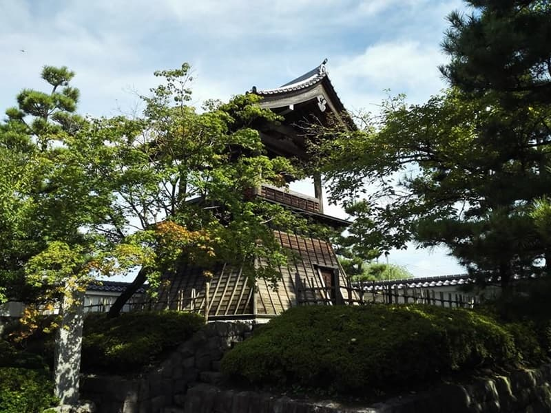忍城・丸墓山古墳。忍城の戦いは日本三大水攻め、黄色い彼岸花,画像02