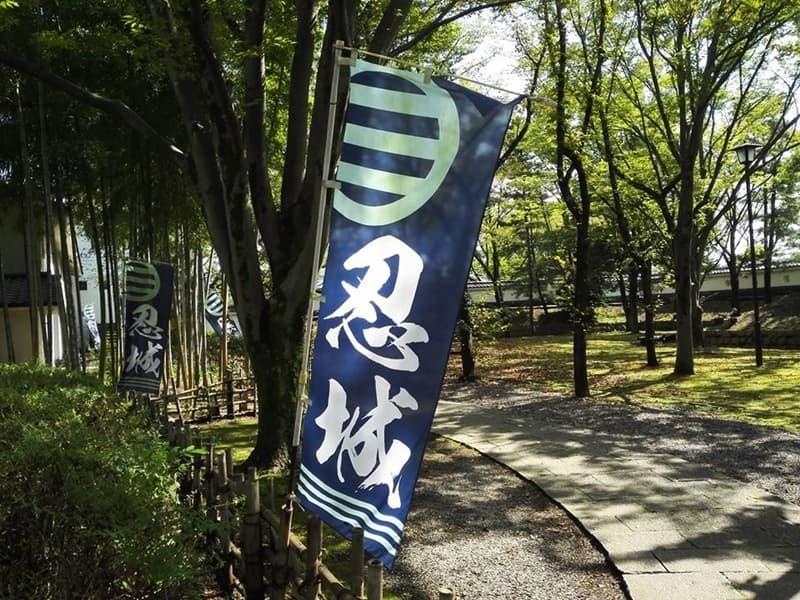 忍城・丸墓山古墳。忍城の戦いは日本三大水攻め、黄色い彼岸花,画像01