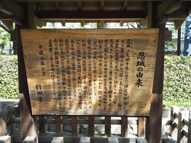 忍城・丸墓山古墳。忍城の戦いは日本三大水攻め、黄色い彼岸花,画像05