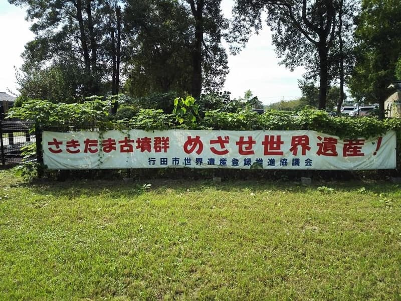 忍城・丸墓山古墳。忍城の戦いは日本三大水攻め、黄色い彼岸花,画像08
