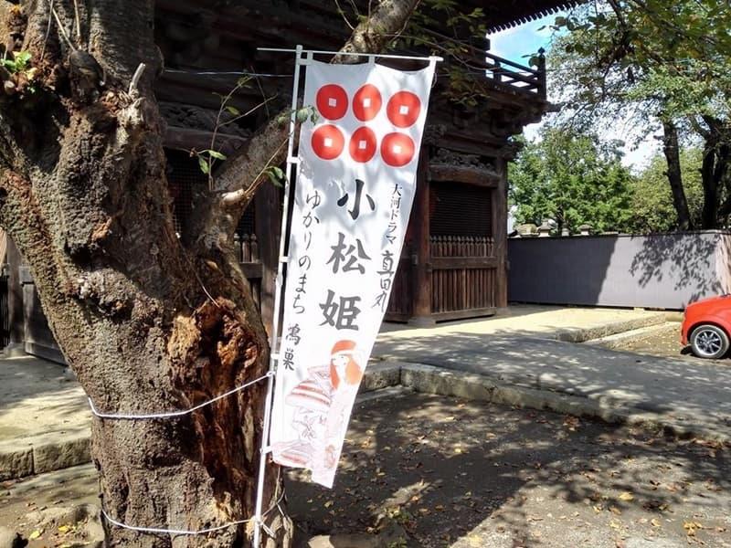 勝願寺。小松姫・仙石秀久の墓、三つ葉葵を許される。鴻巣市本町,画像08