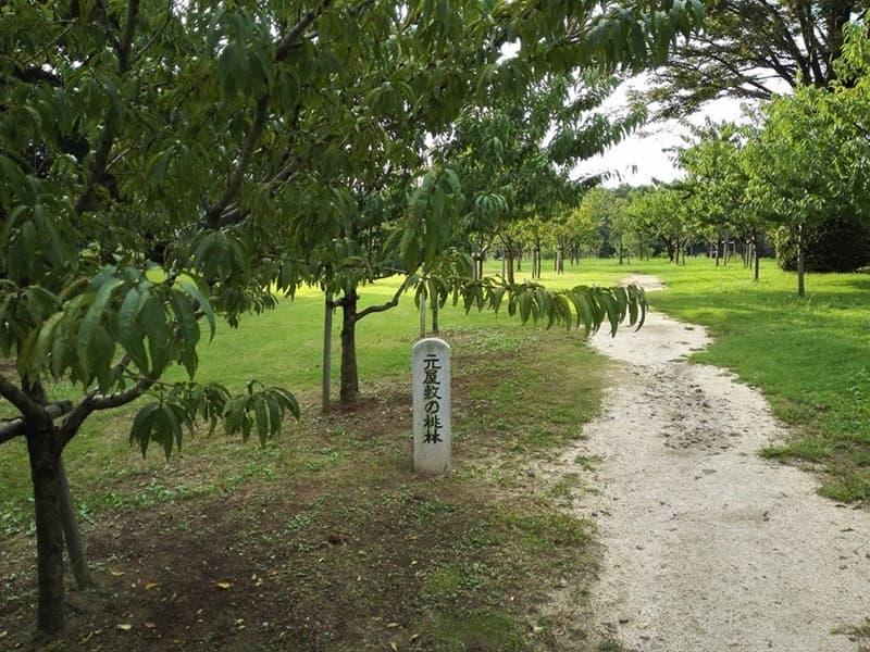 古河公方館。古河御所・鴻巣御所とも呼ばれ、大半は古河総合公園,画像01