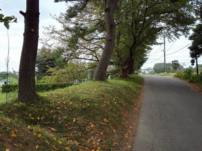 石田堤歴史の広場。石碑は「のぼうの城」エンディングに。行田市堤根,画像08