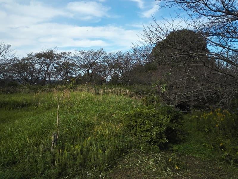 尾高城。捕縛された山中鹿之助幸盛が下痢と偽り脱出、米子市尾高,画像07