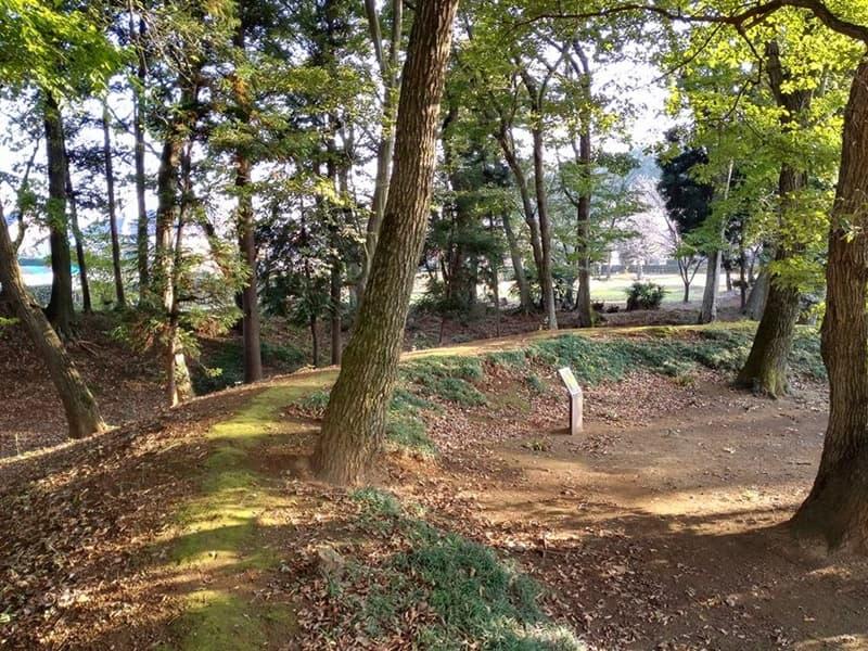 逆井城。後北条氏時代は飯沼城、「真田丸」では海津城のモデル,画像0101